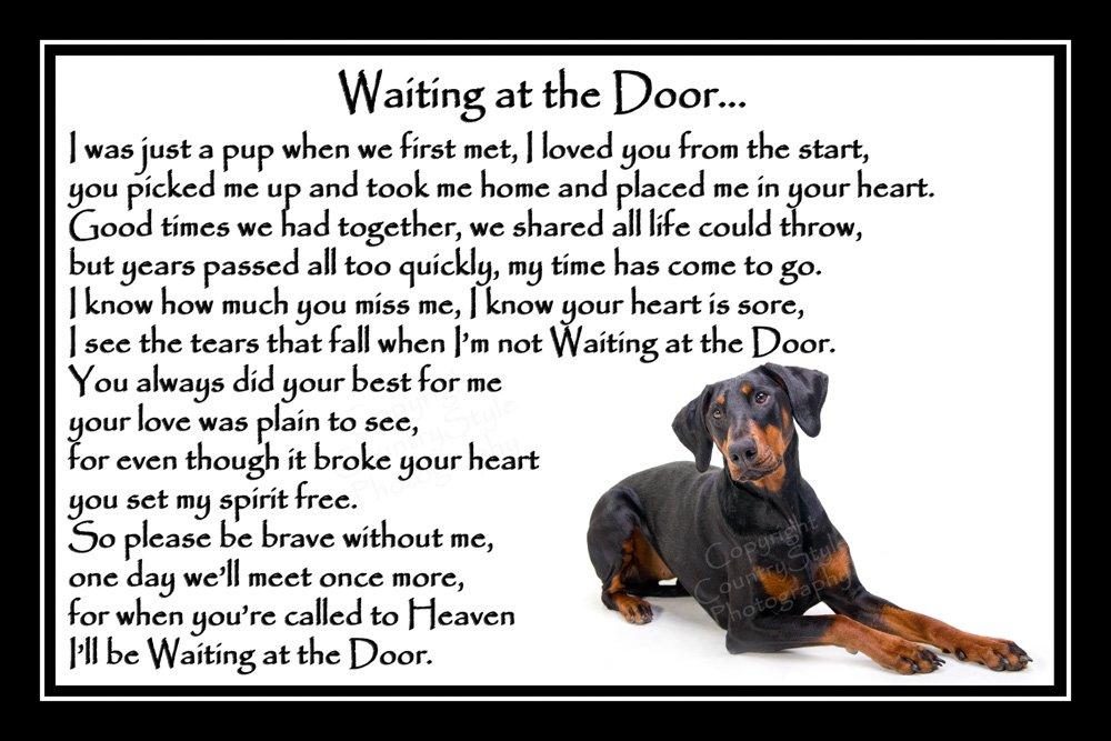 Doberman Pinscher Pet Dog Bereavement Memorial Print (unframed) – Waiting at the Door
