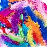 Plumes colorées,300 pièces Plume pour l'artisanat Plumes frappantes Plumes artisanales naturelles Plumes d'oie/dinde pour bri