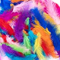 Plumes colorées,300 pièces Plume pour l'artisanat Plumes frappantes Plumes artisanales naturelles Plumes d'oie/dinde…