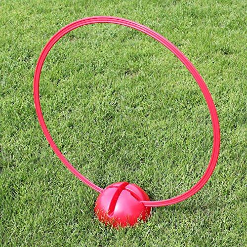 Superhund24 Kombi-X-Fuß mit Kombi-Ring 70 cm, in 4 Far… | 04260337373253
