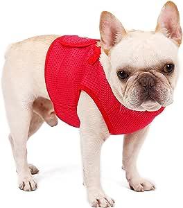PETTOM Imbracatura per Cani Taglia Piccola Media Pettorina per Cuccioli Traspirante e Leggero Rosa XS