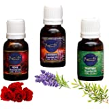 Moriox Aromas Rose,Lavender & Tea Tree essential oils for Hair,Skin & Aromatherapy 100% Pure & Natural Oils (15ml) (Pack of 3