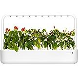 Emsa Click & Grow Smart Garden 9 unidades M52619, Semillas Smart Garden, huerto urbano, tierra inteligente, jardín hidropónic
