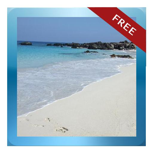 Manini'owali Beach Guide -