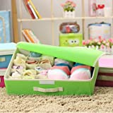 Styleys 15+1 Multi Compartment Cell Foldable Storage Box/Closet Organizer/Non-Smell Drawer Organizer, 15 grids + 1 for Underwear Closet Storage for Socks, Bra, Panty, Tie, Scarf, etc - Color - Green