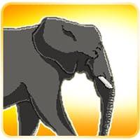 Elephant Runner Pro