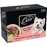 CESAR Sachets fraîcheur en sauce pour chien adulte aux 4 saveurs, 48 sachets repas de 100g