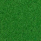 Kunstrasen Rasenteppich Fertigrasen Nadelfilz mit Noppen 6,5mm grün 200 und 400 cm breit, verschiedene Längen, Variante: 3 x 4 m