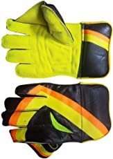 VVN, Wicket Keeping Gloves, Cricket Gloves, Youth