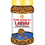 Boltz Black Soldier Fly Larvae Dried Fish Food Treat -60 gm(800+ larave), Natural Food for Aquarium Fishs- High Protein and C