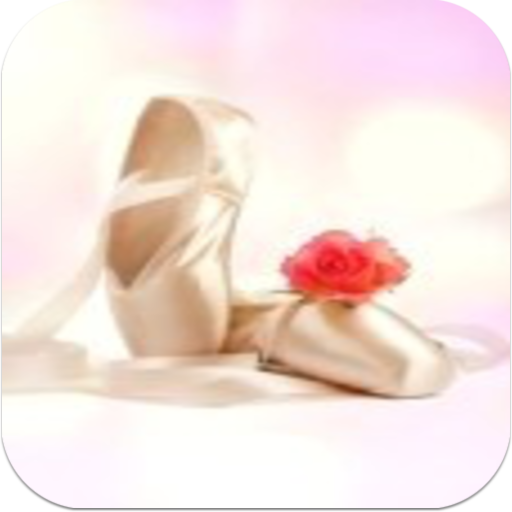 BestAppsToday Ballet Shoes