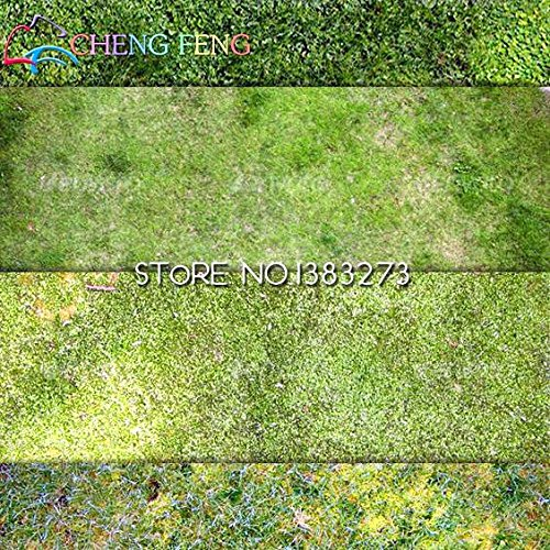 50pcs BOSTON herbe Semences 100% Original Graines mixtes japonais Green Grass Seed pour la décoration de jardin anti-rayonnement