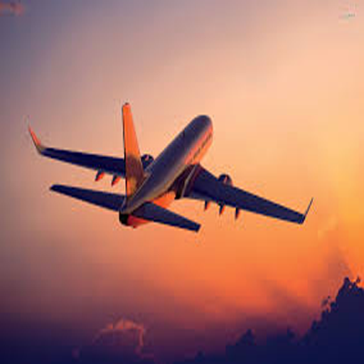 Airline Tickets (Airline Ticket)