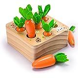 YGJT Jouet en Bois Jouet Bebe 1 2 3 Ans Garçons et Filles Forme de Ferme Montessori 1 an Puzzle en Bois Jeu de tri Motricité