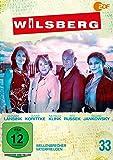 Wilsberg 33 - Wellenbrecher / Vaterfreuden