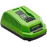Greenworks sladdlös snabbladdare G40UC (Li-Ion 40 V 2,2A 60 min laddningstid för 2Ah-batteri lämplig för alla enheter och bat