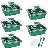 Danolt Bac à Semis 12 Trous Mini Serre pour Semis avec Dôme d'Humidité Réglable Propagateur Jardin pour Démarrage et Croissan