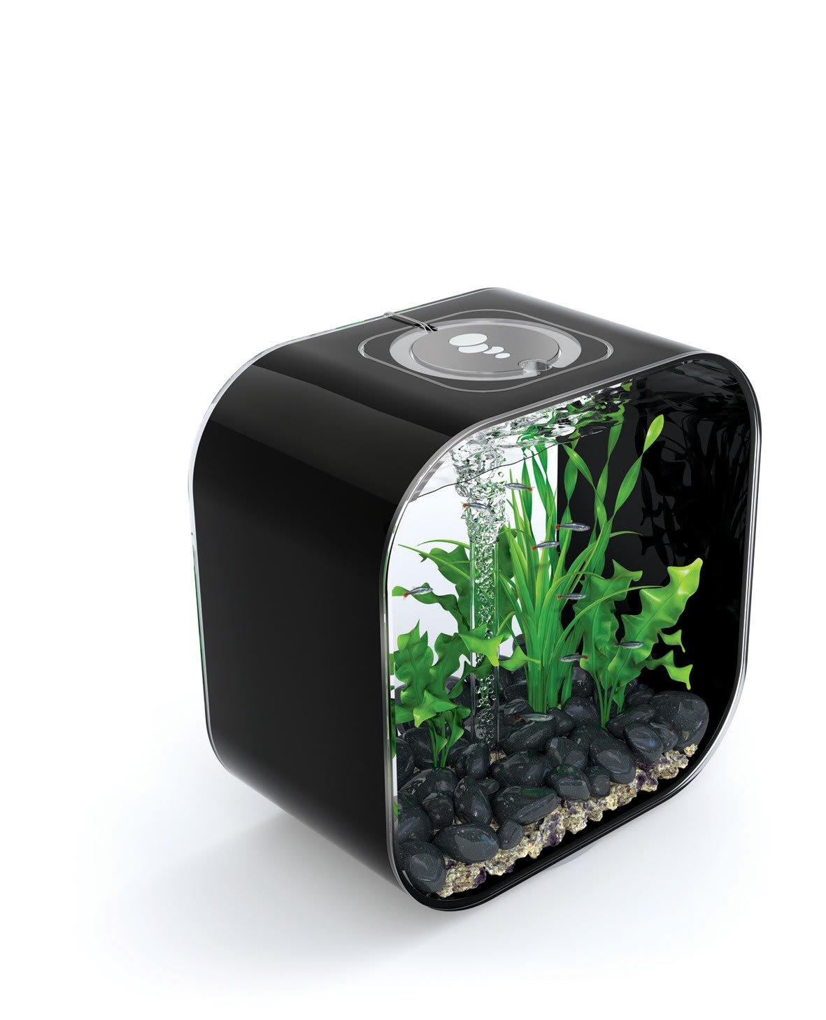 biOrb Life Square 30 Cold Water, Black, Intelligent 24hr LED Light