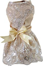 EOZY-Vestito da Cane Pets Abito Sposa Matrimonio Pizzo Fiocco Giacca Champagne Petto di 36cm