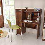 Spacewood Winner Engineered Wood Study Desk (Walnut finish,Walnut Rigato)