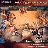 Secular Cantatas Vol 10