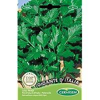 Germisem Gigante D'Italia Semi di Prezzemolo 10 g