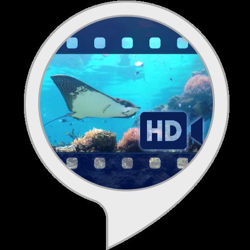 Ambient Visuals: Unterwasserwelt -