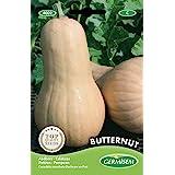 Germisem Butternut Pompoen Zaden 3 g