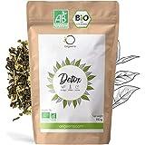 ORIGEENS THE DETOX BIO 150g | Thé minceur base de thé vert et maté | Thé glacé / chaud | Cure detox minceur 30 jours