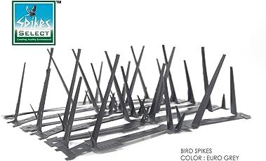 Select Spikes Galvanized Single Sheet Steel Bird Spikes, 11 Ft 91cm 12 Strips x 30cm (Euro Grey)