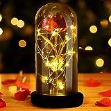 La Bella y la Bestia Rose, Regalos día de la Madre Red Silk Rose en Dome Glass con 20 LED Fairy Lights String, Romántica Sorp