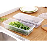 Inditradition Plastic Food Storage Container Set with Drain Mesh, Set of 2, Transparent