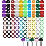 sleutelkapjes voor sleutels met vierkante kop,Fiyuer 100 stuks voor het identificeren van sleutelkappen gekleurde sleutelkapa