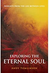 Exploring the Eternal Soul - Insights from the Life Between Lives Paperback