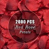 LinTimes 2000 Pezzi Rose Petals Petali di Rosa Artificiali Rosso, Decorazioni di Nozze, San Valentino, Feste di Compleanno -
