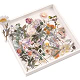 Lot d'autocollants de Fleurs et de Plantes, NogaMoga Pet Stickers Décoratifs Transparents, 6 Thèmes de la Nature Autocollants