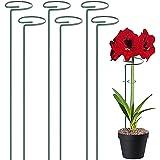 6 Piezas Estaca de Apoyo Metal Estacas de Flores Estaca de Soporte Estacas de Soporte para Plantas para Plantas Flor Rosa Tom