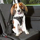 Trixie, bilporslin Dog Protect svart S-M