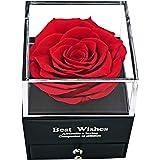 MINCHEDA Confezione Regalo di Gioielli in Rosa Stabilizzate, Rosa Eterna Vera per Festa della Mamma/San Valentine per Donne,
