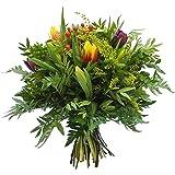 VERSANDKOSTENFREI Blumenstrauß Farbenglück inkl Glückwunschkarte Blumenversand