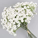 VINFUTUR 3pcs Flores Artificiales Paniculata Ramos Artificiales Decorativas Plantas Falsas Gypsophila Plástico para Decoració