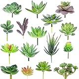 XONOR Plantas suculentas Artificiales Surtidas suculentas Falsas Tallos de imitación Floral para el Paisaje de Loto decoració