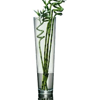 Tres Grand Vase En Verre Transparent A Poser Au Sol Pour Bambou