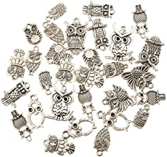 NF&E 30 Pieces 13-22mm Mixed Vintage Alloy Owl Tibetan Silver DIY Charms Fit Pendants & Necklace Jewelry Making Accessories Craft Findings
