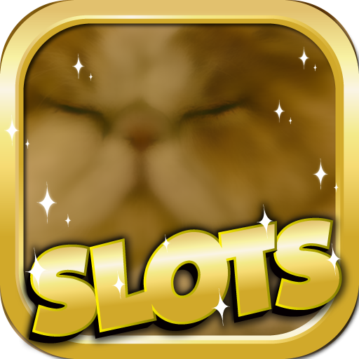 How To Beat The Slots : Persian Edition - Free Slots, Video Poker, Blackjack, And More (Slot Spiele Für Computer)