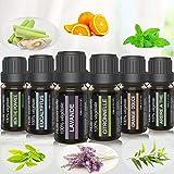 Coffret huiles essentielles pour aromathérapie. Huile essentielle 100% pure et naturelle pour diffuseurs. Boîte 6 x 10 ml (Eucalyptus, Lavande, Tea tree, Citronnelle, Menthe Poivrée et orange Douce).