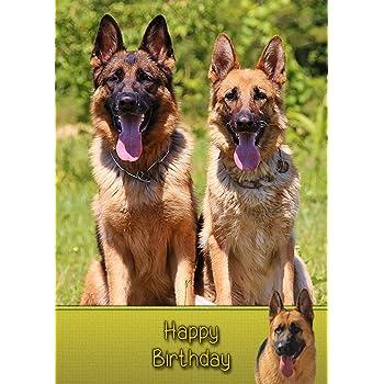 German Shepherd Birthday Card 8x55 Mix Match On Cards