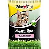 GimCat hierba de rápida germinación para gatos - Hierba para gatos de plantación controlada - De rápido cultivo en 5-8 días -
