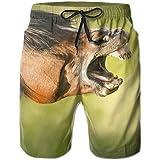 ZHIZIQIU Men's Shorts Pockets Swim Beach Trunk Summer Microphone Fit