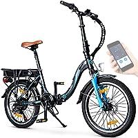 "BLUEWHEEL 20"" klappbares E-Bike I Deutsche Qualitätsmarke I Shimano 7 Gang-Schaltung I EU-konform Klapprad mit App + 250…"